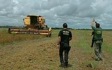 Apreensão de máquinas pelo Ibama, no MT. (Reprodução: Jornal da Globo)