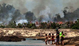 Uma das ilhas do Xingu, desmatada e queimada para o enchimento do lago de Belo Monte. Fotos de Lilo Clareto / El País