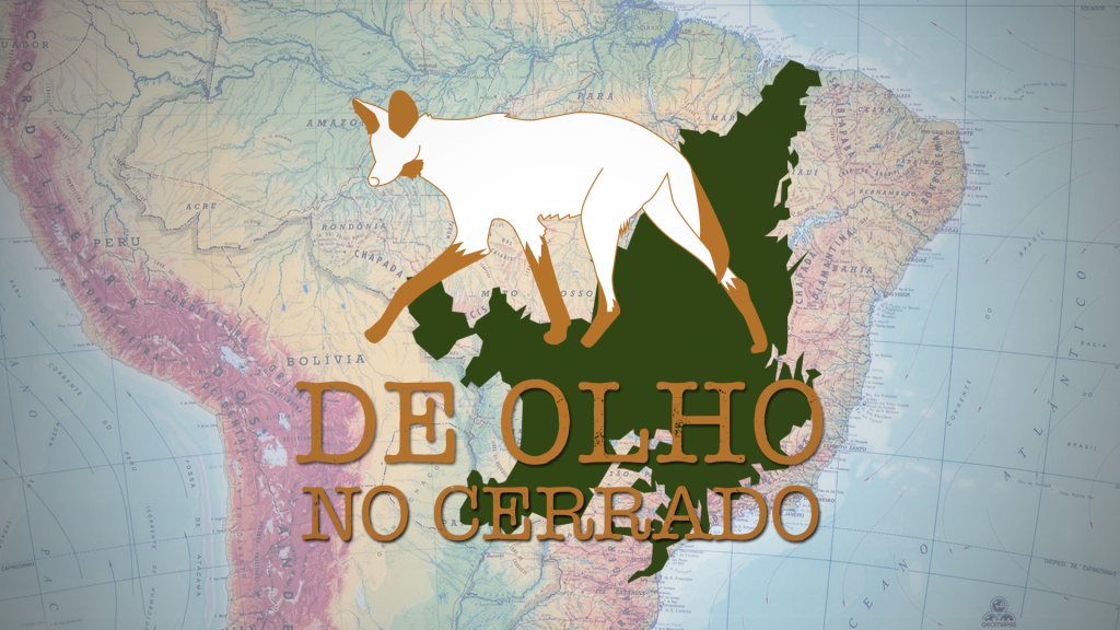 Território de comunidades geraizeiras em Minas é invadido por transmissora de energia