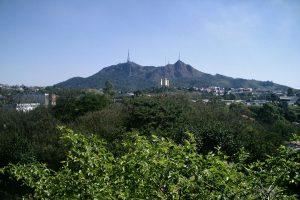 Prefeitura de SP exige que ministro do Meio Ambiente replante árvores em terreno da família